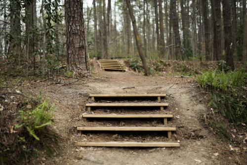 Treehouse Steps Nature Center