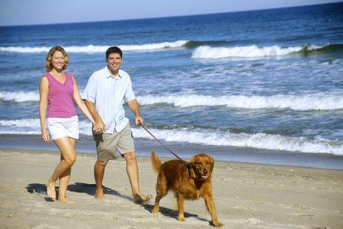 Couple walking their Dog on the beach in North Carolina