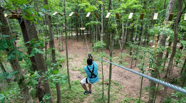Man zip lining amongst the trees