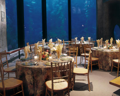 Group Event at the Monterey Bay Aquarium - set banquet tables in front of open sea exhibit.