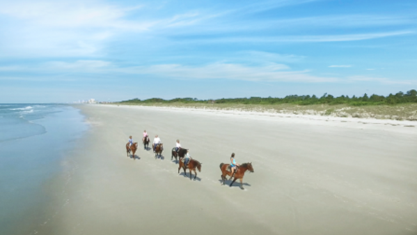 Inlet_Point_Horses_Still010_V_LO_RES_450