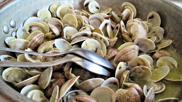 Clambake at Colloca Estate Vineyard