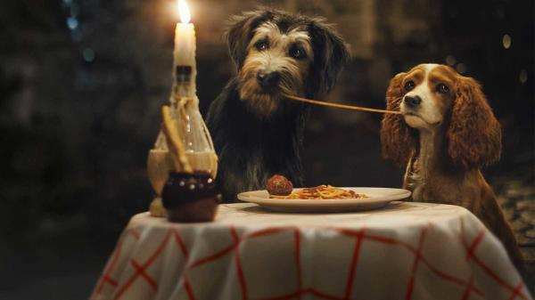 A screen grab of everyone's favorite Italian food loving pups, Lady and The Tramp.