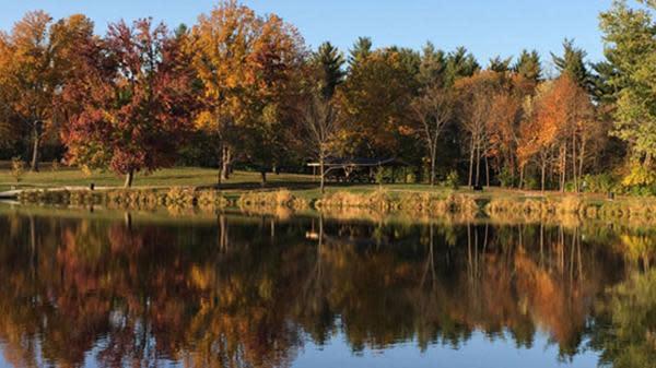 Fall in Hendricks County