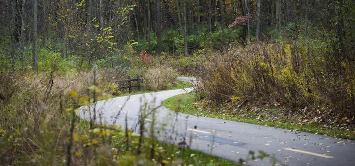 Border 2 Border Trail