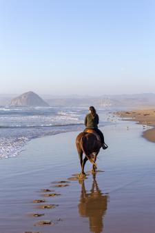 Horseback on Beach