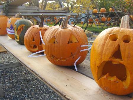 Open Door Halloween