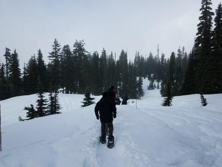 Snowshoeing at Mount Rainier