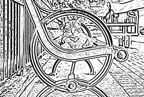 Ohiopyle Cat Coloring Page