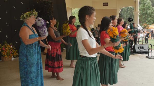3 Days of Aloha