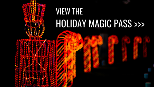 Holiday Magic Pass button