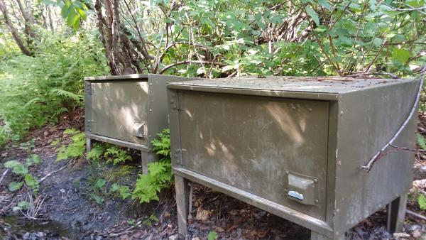 food lockers on a hiking trail to prevent bears