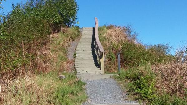 wooden stairs going up a hill