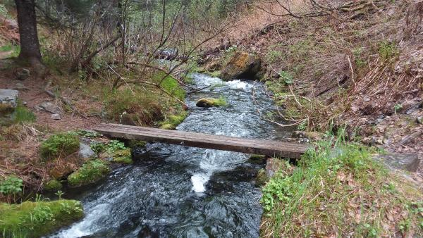 a bridge over a stream on a hiking trail
