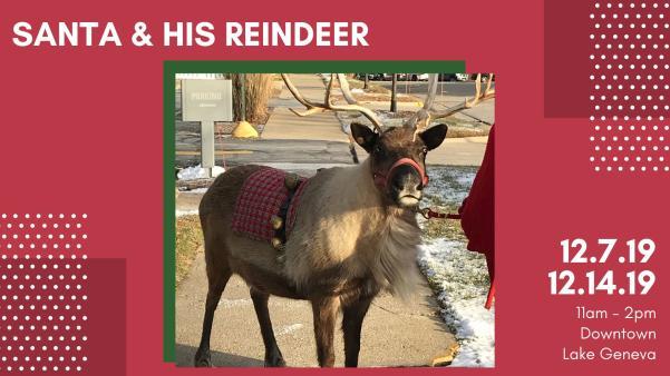 Santa & His Reindeer