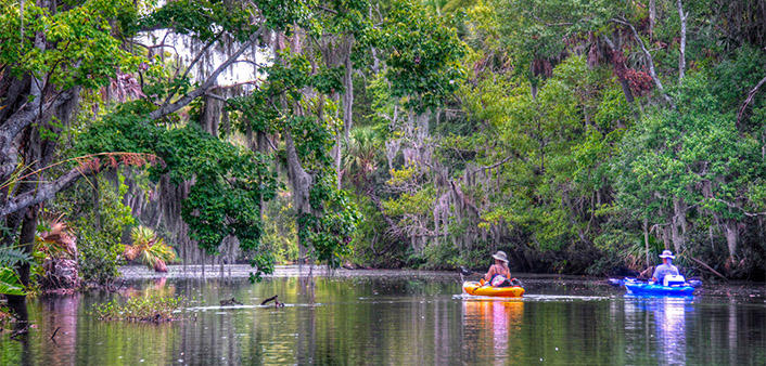 Two people experience an eco adventure by kayaking along a creek