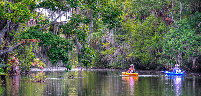 Two kayakers explore Spruce Creek