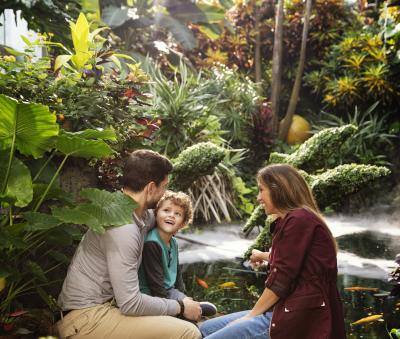 Family with small child admiring plant life inside the Franklin Park Conservatory and Botanical Gardens