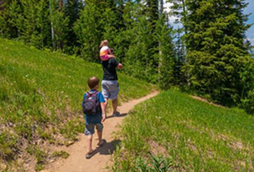 Vista Nature Trail
