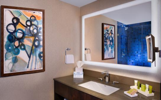 Hilton Austin Bathroom (standard)