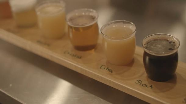 brew samples