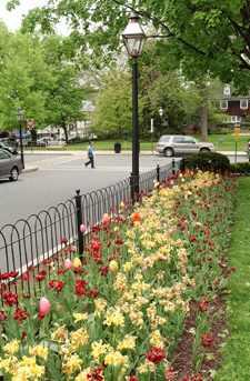 Princeton Palmer Square