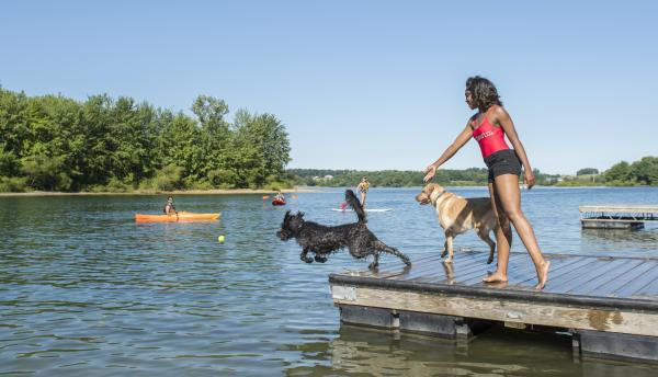 Woman playing with dogs at Codorus State Park