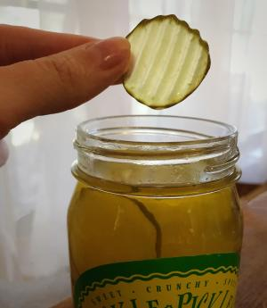 Fickle Pickle 5