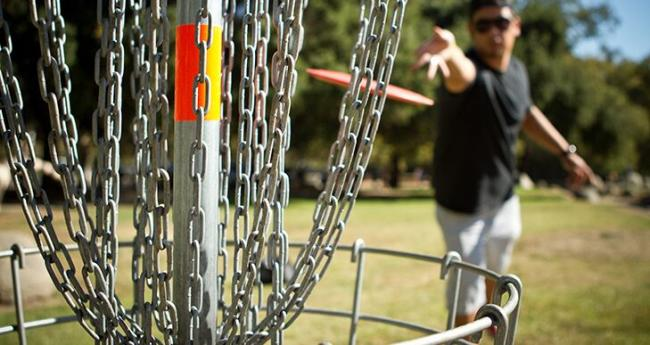 Man playing Disc Golf