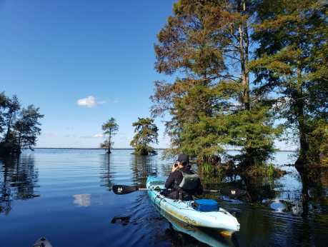 Lake Drummond - Entrance into Lake Drummond