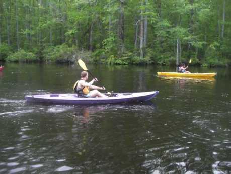 Kayak Nature Tours