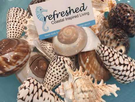 Refreshed Logo