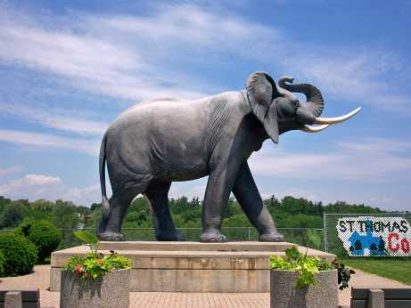 Image result for jumbo statue st.thomas