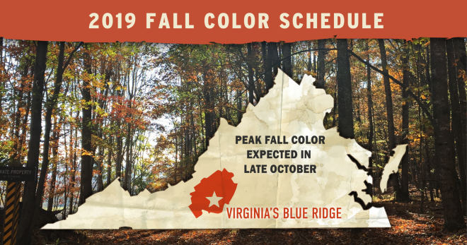 Virginia Blue Ridge Mountains Peak Fall Color - 2019