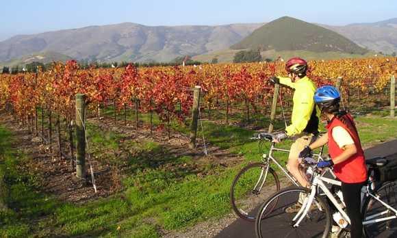 Edna Valley Bike 012.jpg