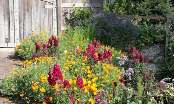 CPL_Gardens.jpg