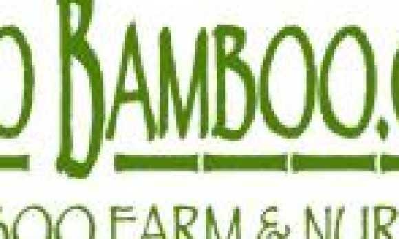 PASO_BAMBOO_high_res_logo.226104420_logo.jpg