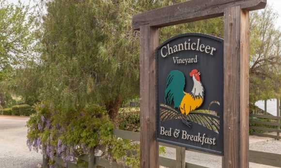 Chanticleer sign whisteria TA.jpg