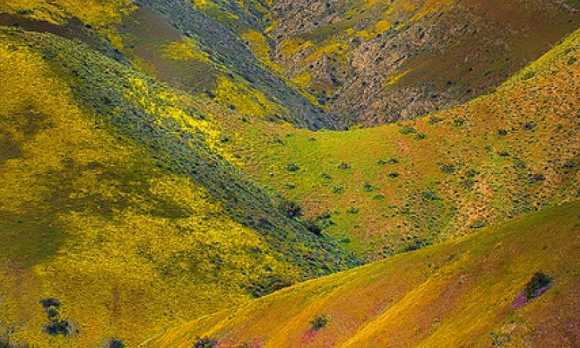 Carrizo Plain National Monument.jpg