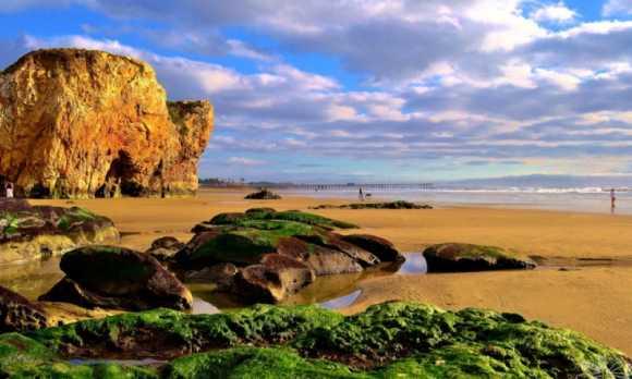 Pismo Beach 2 .jpg