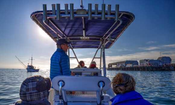 Coastal explorer tour