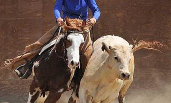 Cowboy-Vanessa-Cutting WEB.jpg