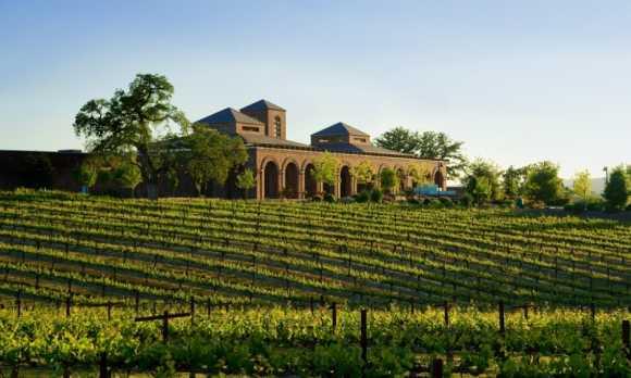Winery13.jpg