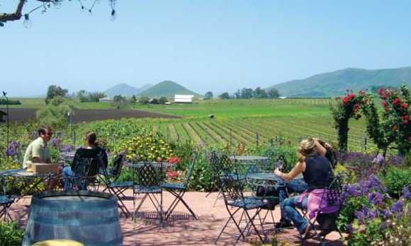 Patio and view of Edna Valley
