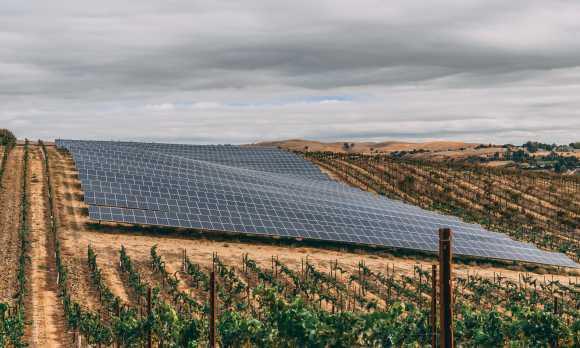 Stone's Throw Vineyard Solar Array