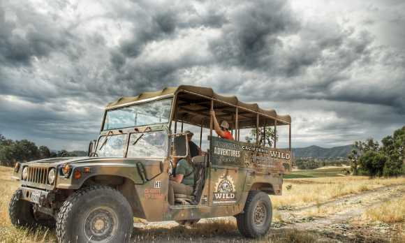 Wildlife Hummer Tour