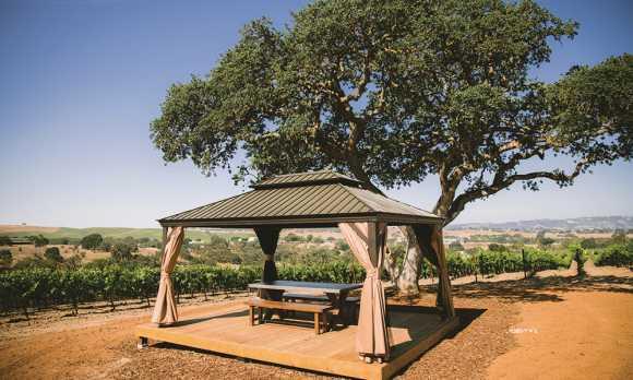 Vineyard Gazebo