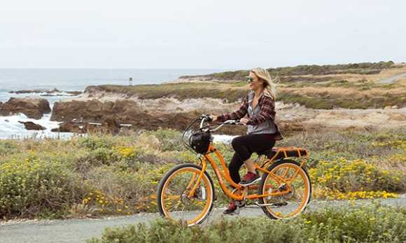 Pedego bike rental