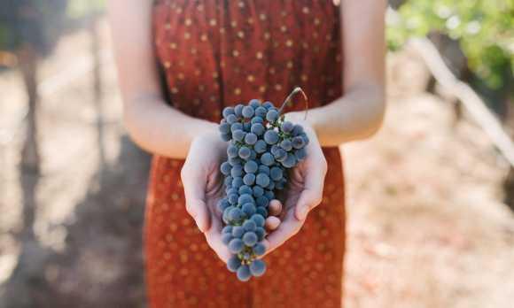 CASS Winery Cabernet Sauvignon