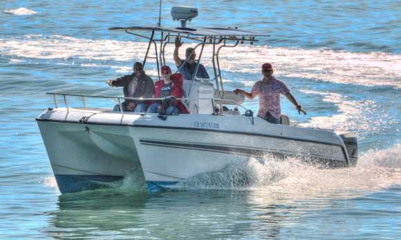 The best whale watching boat in the area